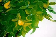 citronnier-détail-feuillage